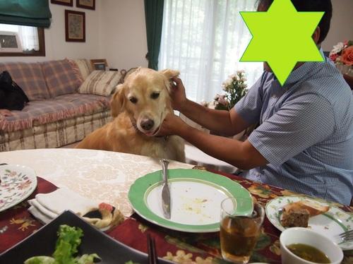 2012-9-4 039 yume2.jpg