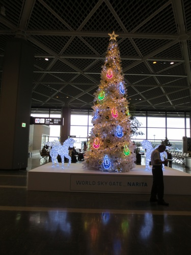 2012-11-28 italy trip 006.JPG
