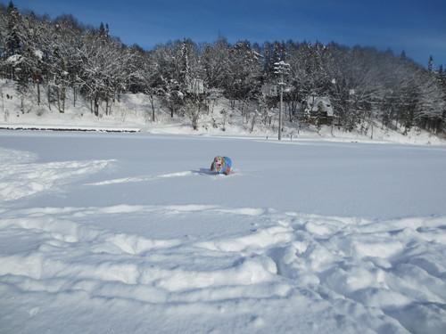 白馬雪遊び2012-1-4.5 042.JPG